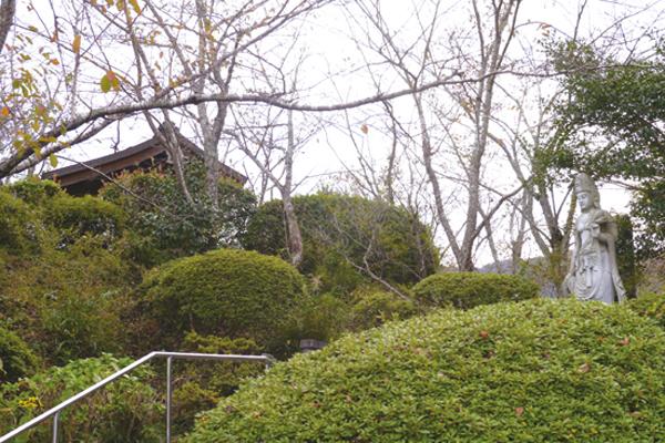 宣徳社及び天神山公園